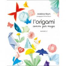 """Livre """"l'origami comme par magie"""""""