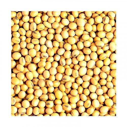Graines de soja jaune Eaglobe 1kg