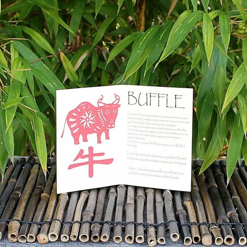 Livret signe du Zodiac du Buffle