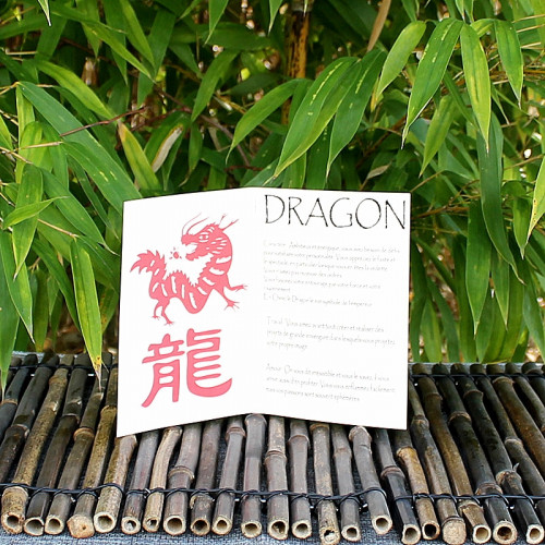 Livret signe du Zodiac du Dragon