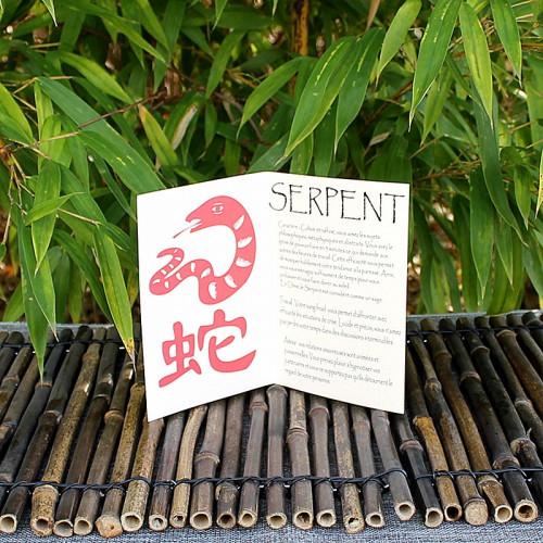 Livret signe du Zodiac du Serpent