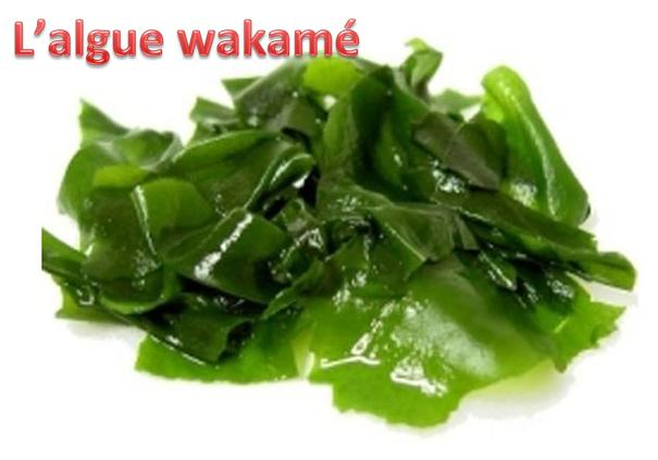 L'algue wakame